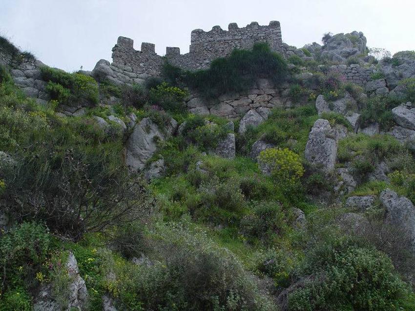 Ancient Asini -2