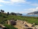 ancient-Asini-6