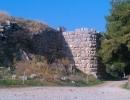 Ancient Asini -8
