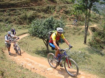 mountain bike-4