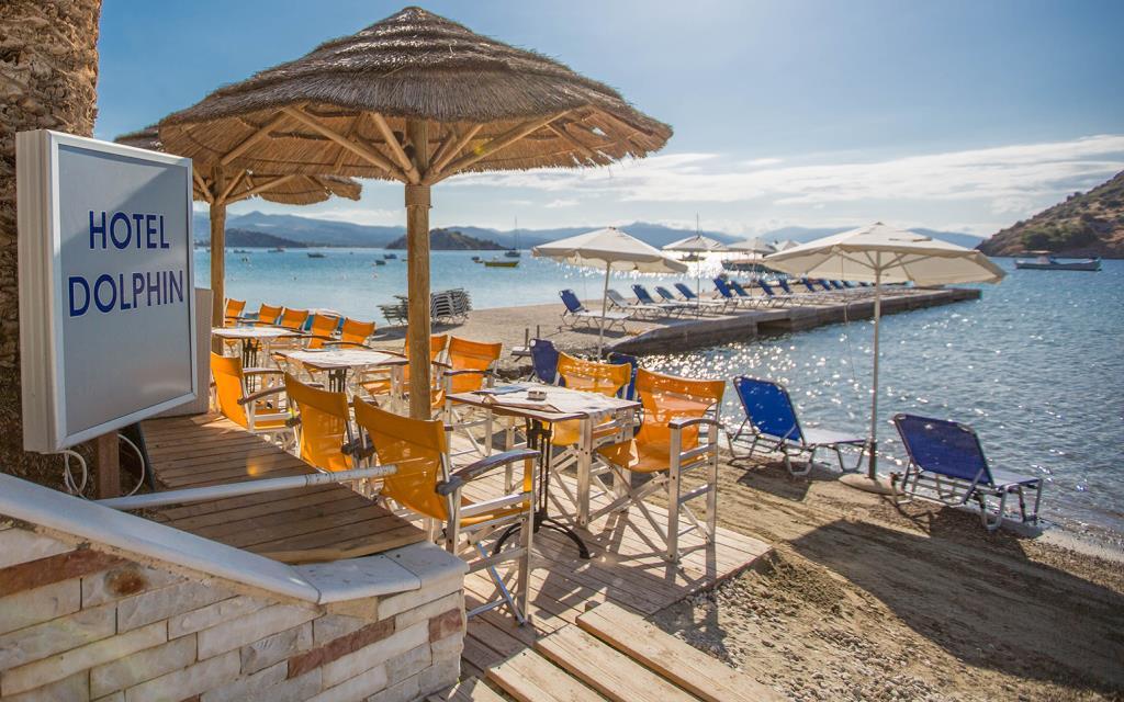 Dolfin-on-the-beach-3- low res